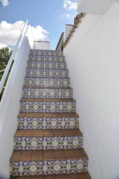 Terrassenwohnung (1)