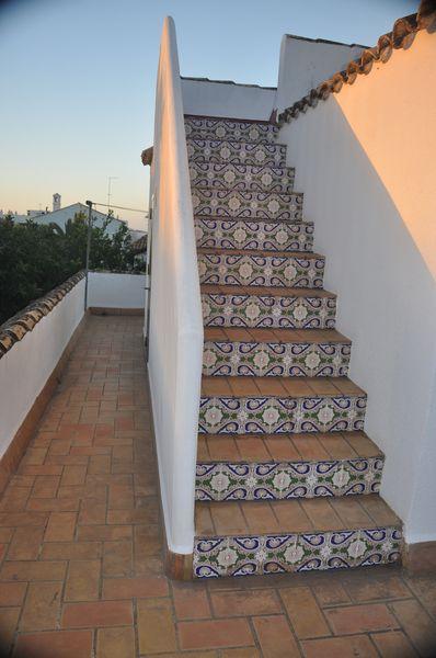 Terrassenwohnung (17)