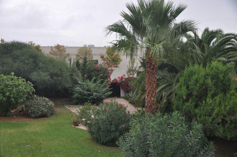 Terrassenwohnung (19)