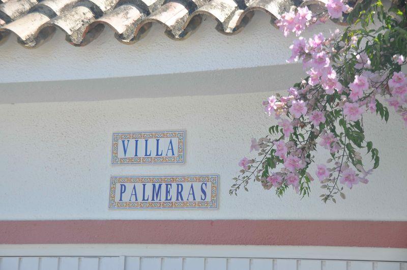 Villa Palmeras (6)
