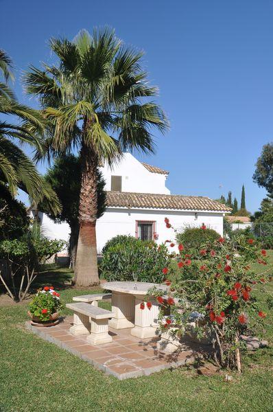Villa Palmeras Garten (2)