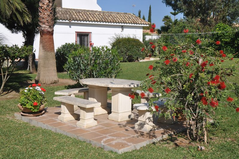 Villa Palmeras Garten (3)