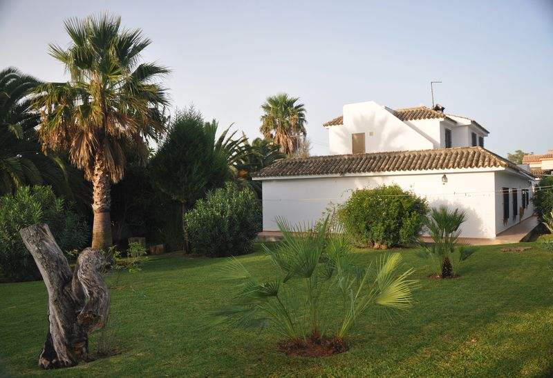 Villa Palmeras Garten (5)