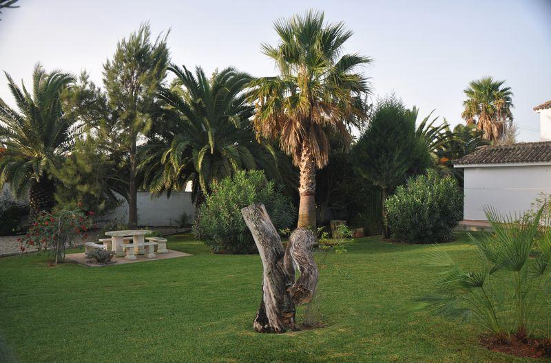 Villa Palmeras Garten (6)