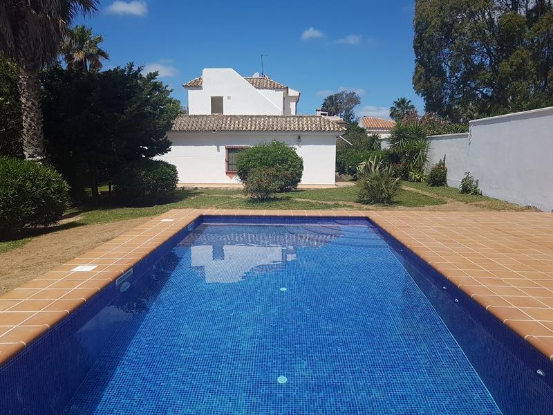 Pool neu (2)